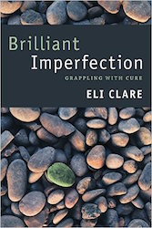 cover of Eli's book Brilliant Imperfection